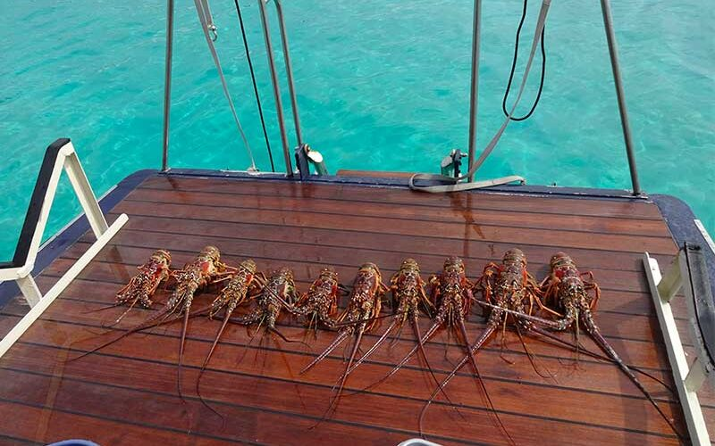san-blas-sailboat-quest-5