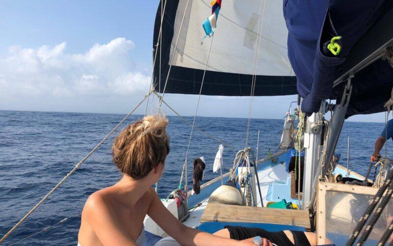sailboat-sophia-15