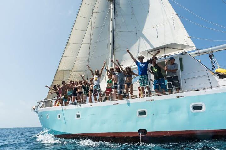 Sailing vessel Wild Card